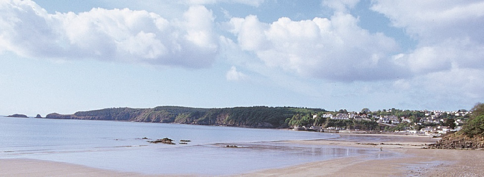 Luxury self catering lodge near Saundersfoot